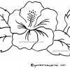 Download Gambar Mewarnai Bunga Kembang Sepatu