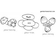 Contoh Mewarnai Sayuran Jamur