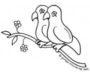 Gambar Mewarnai Burung Lovebird